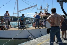 Procesión Marítima en honor de la Patrona de Cedeira - Cedeira, 16 de agosto de 2012 - fotografía por Fermín Goiriz Díaz (429)