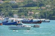 Procesión Marítima en honor de la Patrona de Cedeira - Cedeira, 16 de agosto de 2012 - fotografía por Fermín Goiriz Díaz (458)