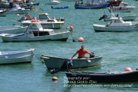 Procesión Marítima en honor de la Patrona de Cedeira - Cedeira, 16 de agosto de 2012 - fotografía por Fermín Goiriz Díaz (472)