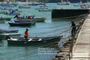 Procesión Marítima en honor de la Patrona de Cedeira - Cedeira, 16 de agosto de 2012 - fotografía por Fermín Goiriz Díaz (477)
