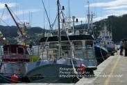 Procesión Marítima en honor de la Patrona de Cedeira - Cedeira, 16 de agosto de 2012 - fotografía por Fermín Goiriz Díaz (54)