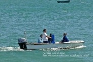 Procesión Marítima en honor de la Patrona de Cedeira - Cedeira, 16 de agosto de 2012 - fotografía por Fermín Goiriz Díaz (64)