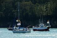 Procesión Marítima en honor de la Patrona de Cedeira - Cedeira, 16 de agosto de 2012 - fotografía por Fermín Goiriz Díaz (82)