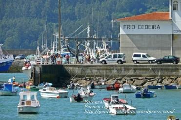 Procesión Marítima en honor de la Patrona de Cedeira - Cedeira, 16 de agosto de 2012 - fotografía por Fermín Goiriz Díaz (9)