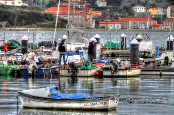 Mugardos (Galicia-España)-enero 2013 (14)-foto por fermin goiriz diaz