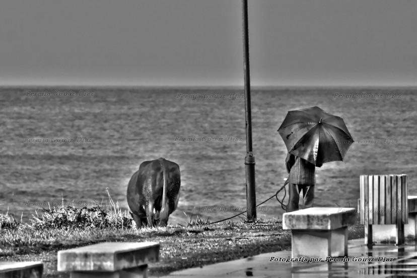 Imaxe tomada na praia de Pantín (Valdoviño), 0 14 de novenbro de 2011