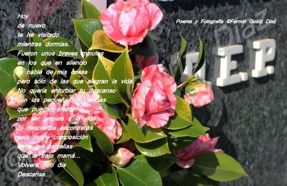 poema a mi padre - fotografia por fermin goiriz diaz, 28 de febrero de 2013