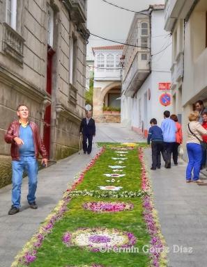 Corpus 2013 - Cedeira - fotografía por Fermín Goiriz Díaz, 02-06-2013 (10)
