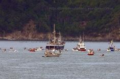 Procesión marítima en honor a la virgen del mar - Cedeira, 16-08-2013 - Fotografía por fermín Goiriz Díaz (102)