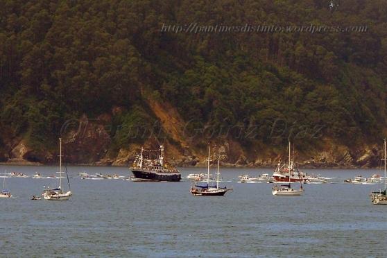 Procesión marítima en honor a la virgen del mar - Cedeira, 16-08-2013 - Fotografía por fermín Goiriz Díaz (103)