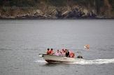 Procesión marítima en honor a la virgen del mar - Cedeira, 16-08-2013 - Fotografía por fermín Goiriz Díaz (25)