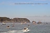 Procesión marítima en honor a la virgen del mar - Cedeira, 16-08-2013 - Fotografía por fermín Goiriz Díaz (51)