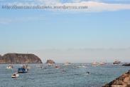 Procesión marítima en honor a la virgen del mar - Cedeira, 16-08-2013 - Fotografía por fermín Goiriz Díaz (60)