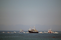 Procesión marítima en honor a la virgen del mar - Cedeira, 16-08-2013 - Fotografía por fermín Goiriz Díaz (75)