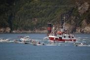 Procesión marítima en honor a la virgen del mar - Cedeira, 16-08-2013 - Fotografía por fermín Goiriz Díaz (79)