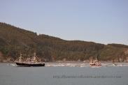 Procesión marítima en honor a la virgen del mar - Cedeira, 16-08-2013 - Fotografía por fermín Goiriz Díaz (80)