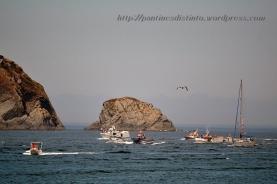 Procesión marítima en honor a la virgen del mar - Cedeira, 16-08-2013 - Fotografía por fermín Goiriz Díaz (81)
