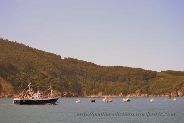 Procesión marítima en honor a la virgen del mar - Cedeira, 16-08-2013 - Fotografía por fermín Goiriz Díaz (83)
