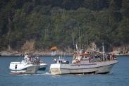 Procesión marítima en honor a la virgen del mar - Cedeira, 16-08-2013 - Fotografía por fermín Goiriz Díaz (87)