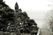 Cementerio de Teixido (Cedeira) foto Fermin Goiriz Diaz