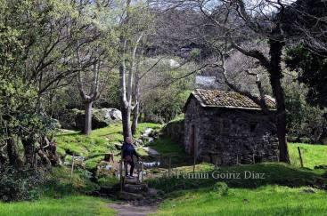 San Andres de Teixido - Foto Fermin Goiriz Diaz